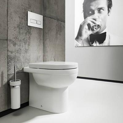 Modern Back To Wall Toilets