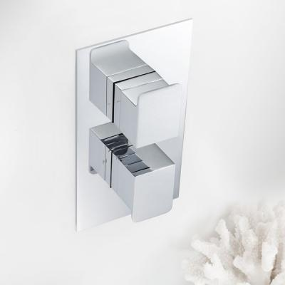 Modern Concealed Shower Valves